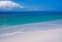beach / by Leslie Kokesh