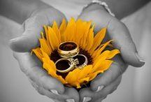 Dream Wedding / by Gina Gray