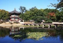 Korea - Gardens / Korea - Gardens