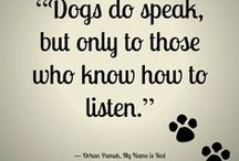 Favorite Quotes / Wisdom from our Dogs:  Your Favorite Sayings About Dogs
