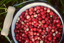 Foods We're Savoring / by Happify