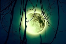 "Lunar Magic! / ""A kiss on the beach when there is a full moon is the closest thing to heaven."" ~H. Jackson Brown Jr."