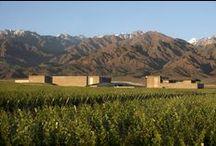 Bodegas | Wineries / Bodegas realizadas por el estudio Bórmida & Yanzón