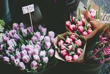 Flower flower flower / by LILIYA ISHKAEVA