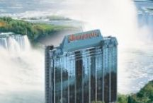 Sheraton on the Falls  / Sheraton on the Falls Hotel & Conference