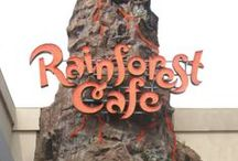 Rainforest Cafe @ Falls Avenue Resort  / Themed interactive family restaurant