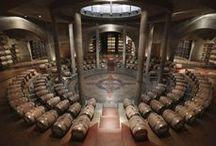 Wine Cellars | Cavas
