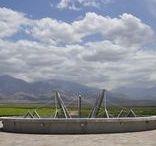 Wineries | Bodega Diamandes / Proyecto Eliana Bórmida & Mario Yanzón. 2009. Superficie cubierta: 12.500 m2. Elaboración: 1.200.000 litros. Valle de Uco. Mendoza, Argentina.