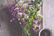 [ flowers ]