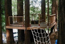 Tree House ~ ideas / funky and beautiful tree house ideas / by Robin Tillman