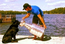 Kings Creatures / Meet some of the Kings four-legged fans.