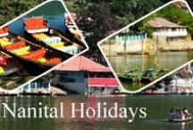 Indian Holidays Destination - Joy Travels / Joy Travels offers a Complete information on holiday packages in India covering all tourist destination in India. Find out Indian Tourist destinations and get information about top hill station, beaches, Honeymoon spot In India..