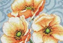 Cross-stitches / by Tara Dactyl