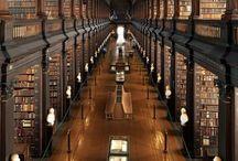 Bookshelves / Libraries / by Jamie Leung