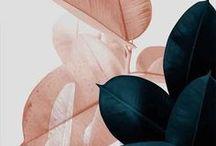 Patterns & Fabrics | Ethi / Patterns, fabrics and design inspiration.