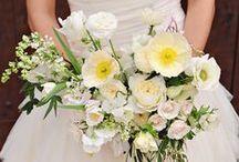 wedding / by Nicole Davis