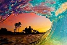 Amazing Sights