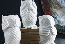 Owls / by Chelsey Erwin-Coffman