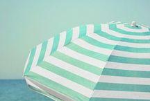 Color - Greens / by Stephanie Salateo