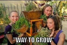 """""""Way to Grow"""" / New garden series retitled from last season's """"Gardens of the Rich and Famous."""" I teach a couple of young women how to garden, grow food and craft from the garden! We do it with humor."""