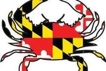 Maryland! / by Tracy Jenkins