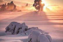 Winter Wonderful / by Pamela Sommers