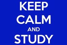Study Inspiration / Lynn University has all of the tips and laughs to get you in the studying mood! Keep Calm & Study On!