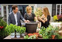 Garden Videos by Shirley Bovshow