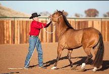 HorseStuff.