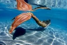 Inspire    Mermaids.