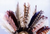 Inspire    Feathery Feathers