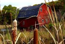 Old houses, barns and other old buildings / by Susan Wheeler Chalker