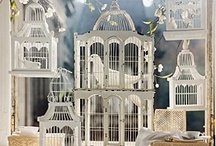 Bird Cages / Captured beauty - so many ideas - not enough time.