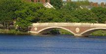 Beautiful Bridges / We build too many walls and not enough bridges. Isaac Newton