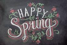 Spring / Spring Decor / by Marisa Lopez-Sevilla