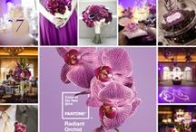 Trending! / by Intertwined Events