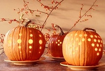 Fall / changing leaves, crisp breeze, hot chocolate, apple cider, corn mazes, carving pumpkins, football, caramel apples, pumpkin spice lattes ♥ / by Very Definitely