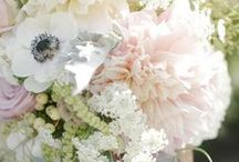 Blush (&Neutrals) Wedding Inspiration / Blush Crush / by Intertwined Events