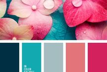 Color Board / by Tamara Lara
