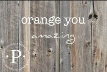 orange you amazing / A tribute to my beloved favorite color.