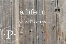 a life in pictures / Developing the art and practice of photography.