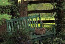 garden ideas I love / by Sheri McEntire