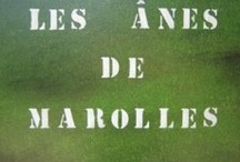 Donkeys / Mam'Âne et ses Âne'cdotes - Une passion pour nos amis aux grandes oreilles / by Domino Albert