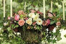 Flora / by Jeanette Parker