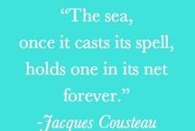 Ocean Quotes / by Domino Albert