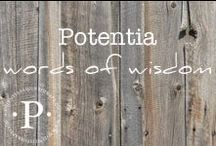 potentia words of wisdom / Words and wisdom from the Potentia blog and beyond.