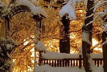 WINTER BEAUTY / Photos and quotes about winter...