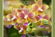 LOVE TO FEEL GOOD! / Quotes, photos, and clips from Susan Apollon's blog: www.LoveToFeelGoodBlog.com