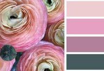 Color / Colors we love! Color, hues, bright, colorful, color palette, color inspiration,