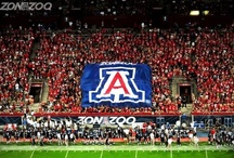 Sports + Wellness / My obsession with the Arizona Wildcats, an attempt to work out and exercise, simple fitness, and health tips / by Jackie Sherman